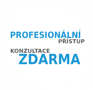 Profesionální přístup, konzultace zdarma